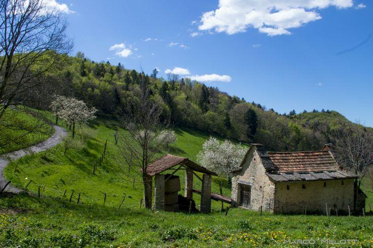 Primavera nei pressi della c.da Calavedo