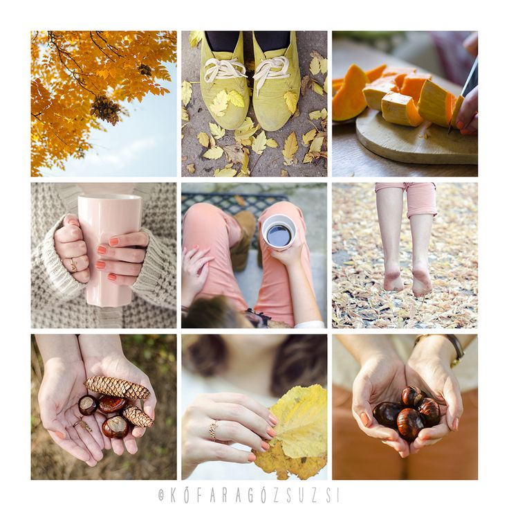 autumn feeling by kofaragozsuzsiphotos
