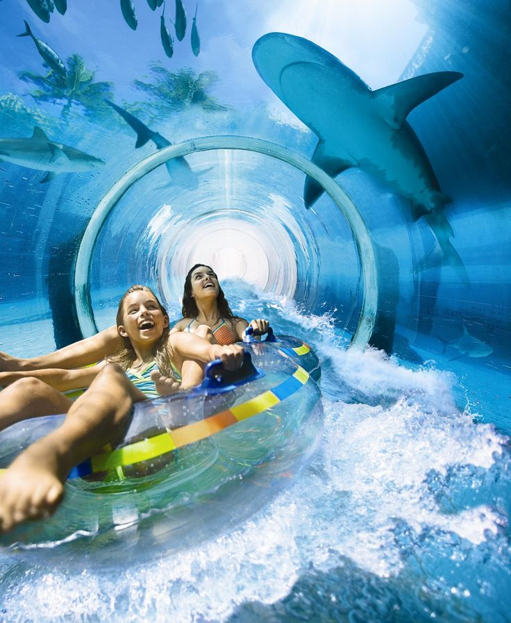 The Shark Tunnel at Atlantis, The Palm, Dubai. To book go to www.notjusttravel.com/anglia