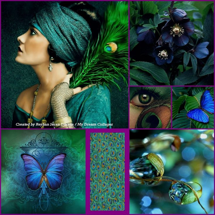 Best 25 Peacock Color Scheme Ideas On Pinterest: 17 Best Ideas About Peacock Colors On Pinterest