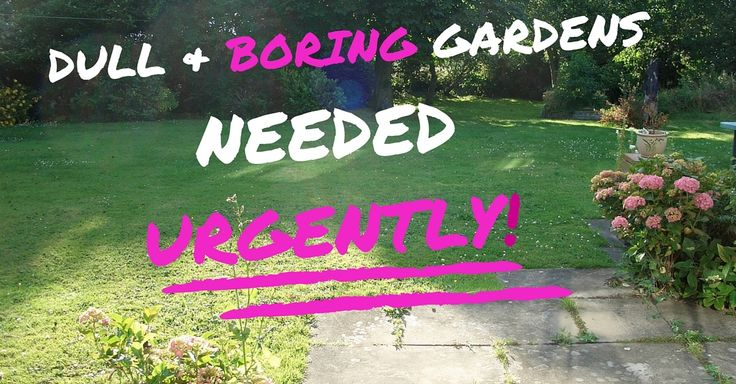 Know anyone with a garden that needs design help for FREE