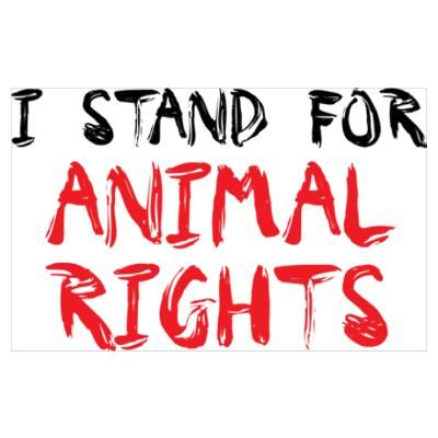 I stand for Animal RIGHTS! I believe all God's creatures should be treated with respect & compassion.