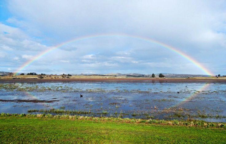 We all love a rainbow