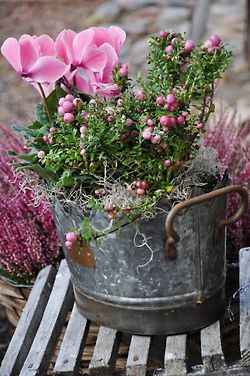 Lovely bucket filled with pretty pink blooms