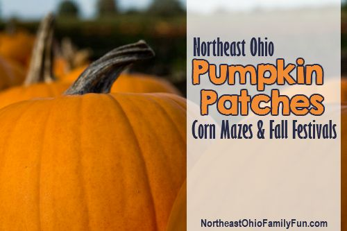 Northeast Ohio Pumpkin Patches Corn Mazes and Fall - To remind me in a few weeks :)