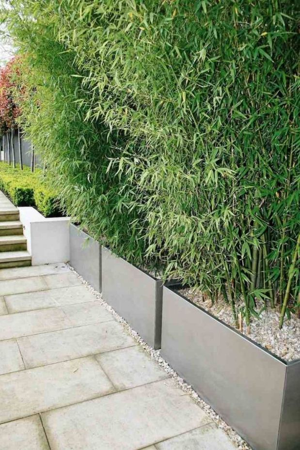 Gartenanlagen Ideen Sichtschutz Recybuche Garten Ideen Privacy Fence Landscaping Fence Landscaping Backyard Garden Layout