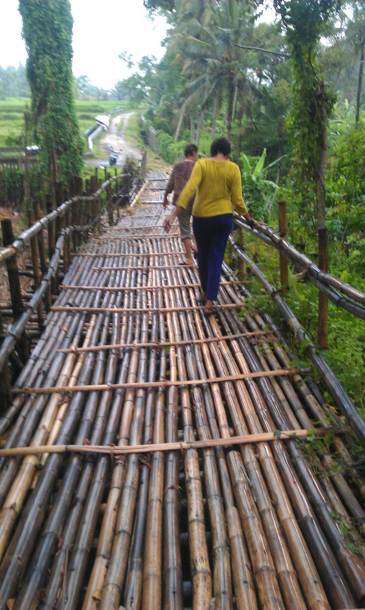 Bamboo bridge. A bit scary.