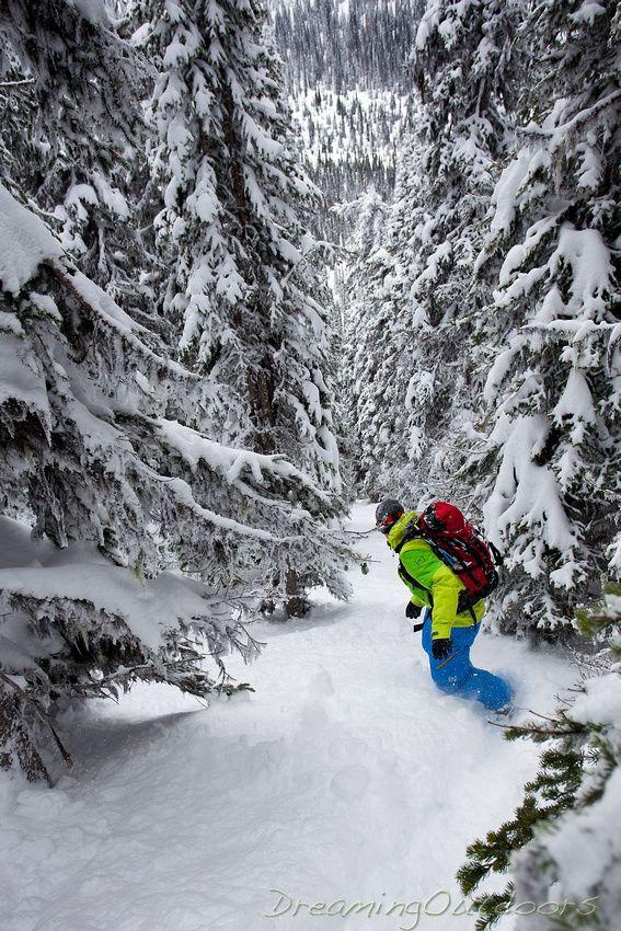 Just beautiful - Trophy Mountain, BC   #treeruns www.saintluke.co