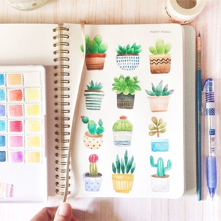 "286 Likes, 14 Comments - ғᴇʀɪɪɴ - ʀɪɪɴ (@nantokaa) on Instagram: ""» *・゜ 0225 Been sick for 3 days and finally a page full with succulents! Picture references from…"""