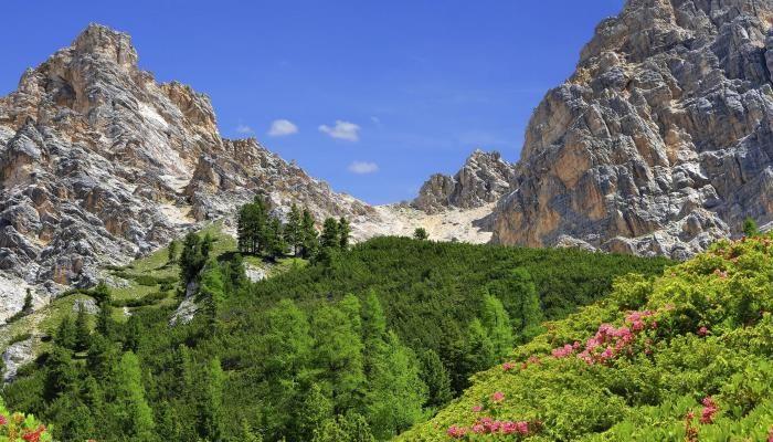 4*-Wellnessurlaub im wunderschönen Südtirol! 3 Tage ab 79 € | Urlaubsheld