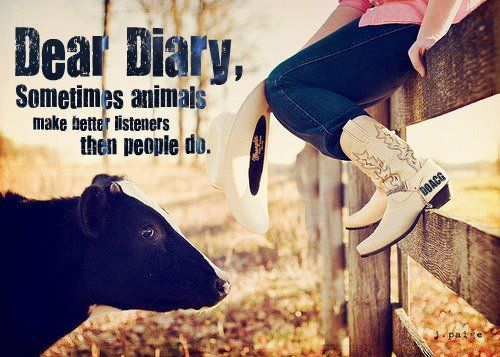 without a doubt: Quotes, Country Girls, Dear Diaries, Farms, So True, Truths, Country Life, Cows, Animal