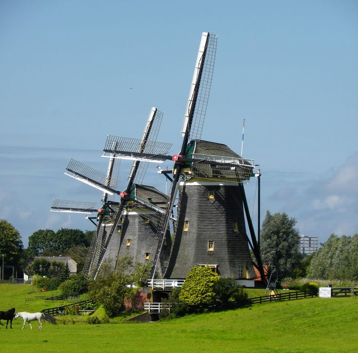 Molengang Driemans polder 1672