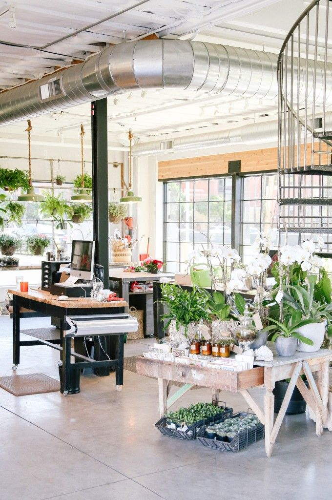 Camelback Flower Shop | REstyleSOURCE