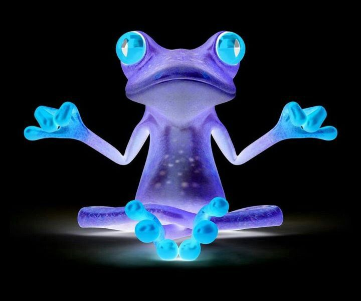 Neon Frog Pics N Wallpapers Pinterest Neon And Frogs