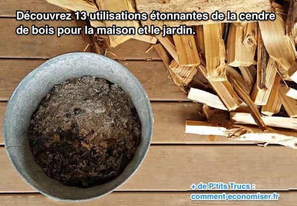 Vous vous êtes déjà demandé ce que vous pouviez faire de toute cette cendre de bois de la cheminée ? Eh bien, sachez que la cendre de bois peut servir à la maison, dans le jardin, dans le tas de compost et comme insecticide. Regardez :-)  Découvrez l'astuce ici : http://www.comment-economiser.fr/13-utilisations-cendres-de-bois-maison-jardin.html?utm_content=buffer1bdc7&utm_medium=social&utm_source=pinterest.com&utm_campaign=buffer