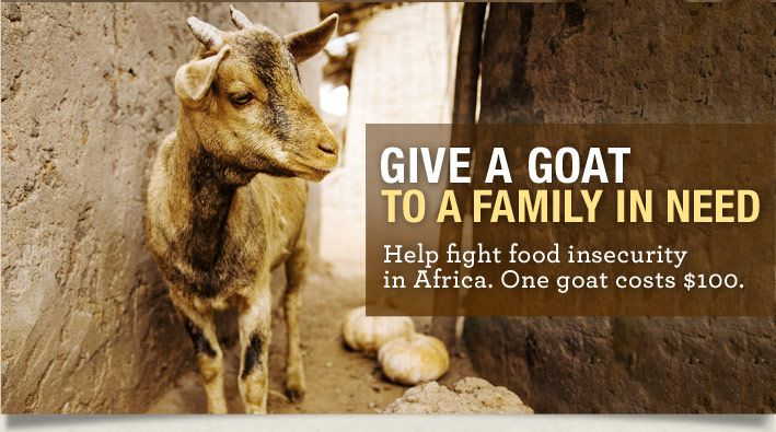 Give a goat to a family in need. Help tackle the food crisis in Africa with a goat! www.notjustagoat.com