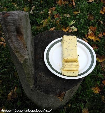 sýr bez syřidla