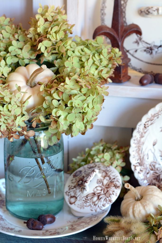 In the Potting Shed: Brown Transferware, Hydrangeas and Pumpkins | homeiswheretheboatis.net