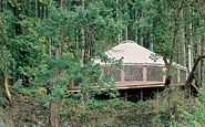 prefab yurts