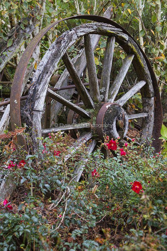 Wagon wheel, Gear Homestead, Porirua   © Elyse Childs Photography