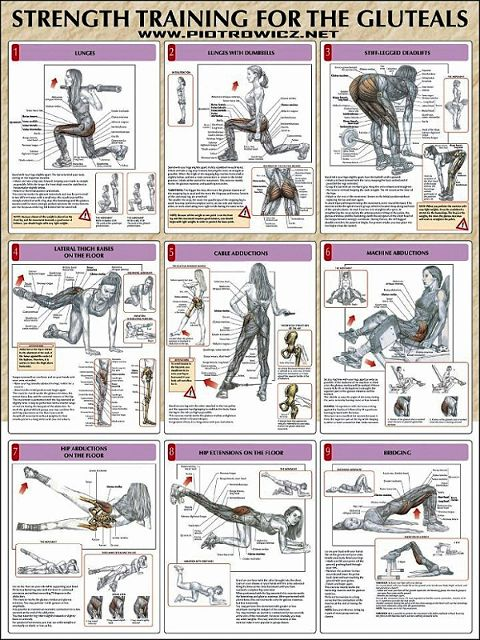 9 different butt workouts for women's anatomy. #routine #workout muscletransform.com