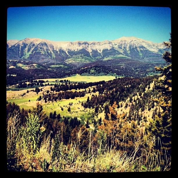 Grassy Mountain Trail On The Bangtail Divide Near Bozeman MT