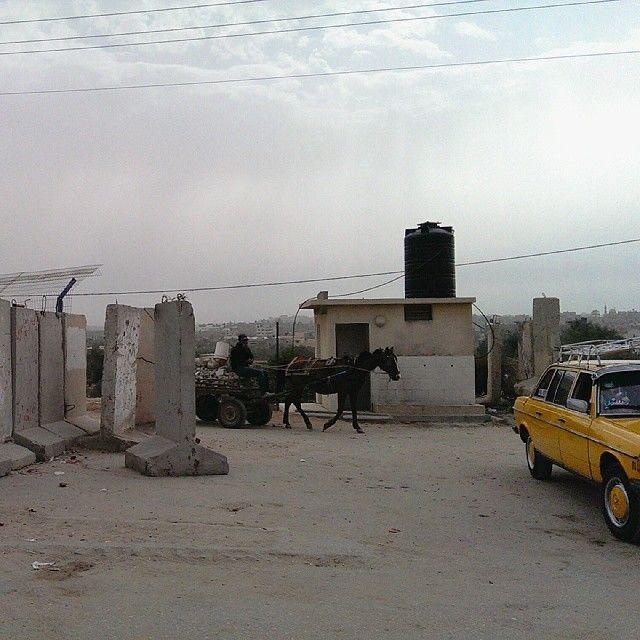 .@lodgaard | In #Gaza...