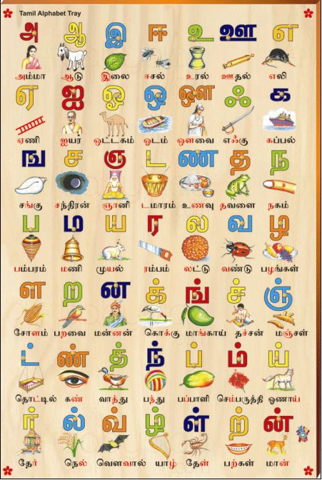 Tamil Alphabet Picture Tray Rs 545