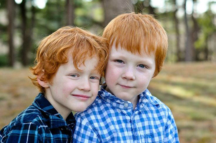 Adorable redhead boys  twin children and families | Twins and a baby sister on the way — Andover, MA Children, Family ...