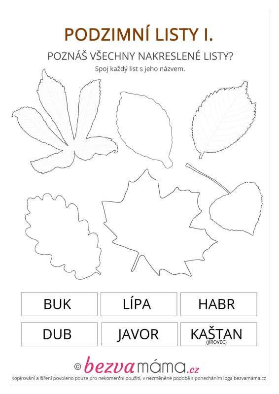 podzimni_listy_1_cb.jpg (566×800)