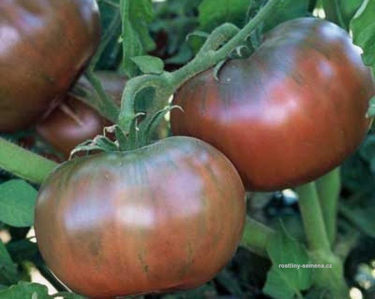 Rajčata odrůdy Cherokee jsou původním druhem nešlechtěné zeleniny bez chemie. Jsou větší než běžná rajčata jen nepravidelného tvaru. Plody rajčete Cherokee jsou zbarevna do zvláštních fialových variací.