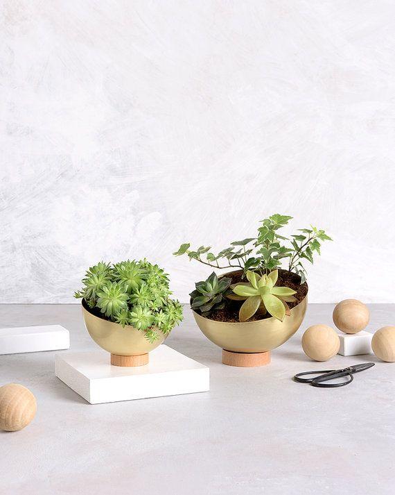 Succulent Planter - Brass Planter Pot - Modern Planter - new home gift, indoor garden, indoor planter, housewarming gift,