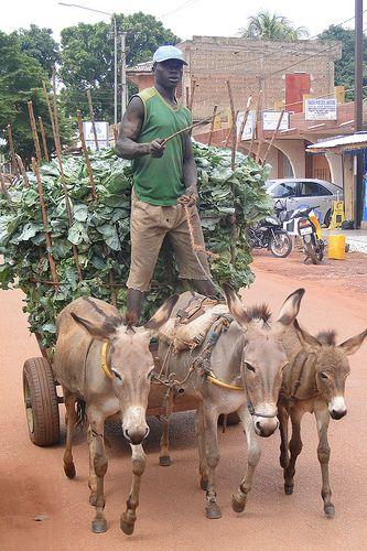 Vegetable Vendor - Bobo-Dioulasso - Burkina Faso