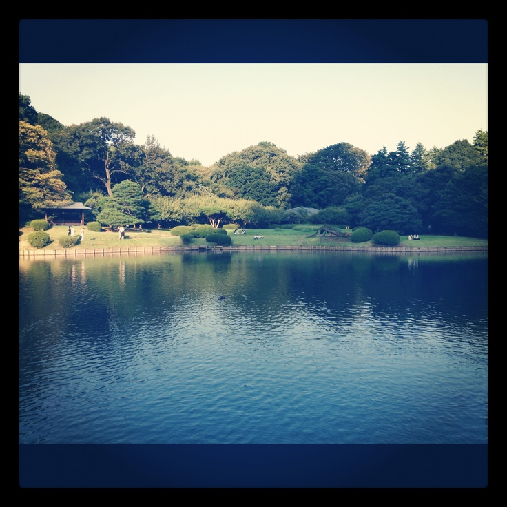 Shinjuku Gyoen, taken by iphone