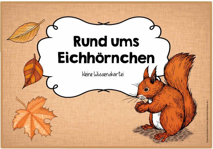 Rund ums Eichhörnchen Im Sachunterricht folgt demnächst eine Einheit zu den Waldtieren. Dabei werden wir vor allem das Eichhörnchen genaue...