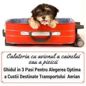 Centru Informare Petplaza - Petplaza Romania
