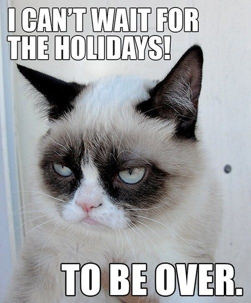 Grumpy Cat doesn't like the holidays!