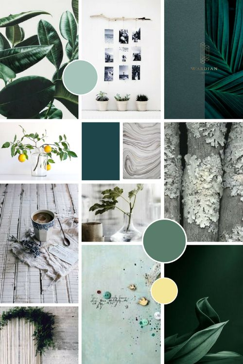 Green and grey, Hygge Inspired natural moodboard for Petsy Fink branding   byRosanna