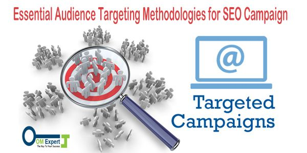 Essential Audience Targeting Methodologies for SEO Campaign - Online Marketing Expert