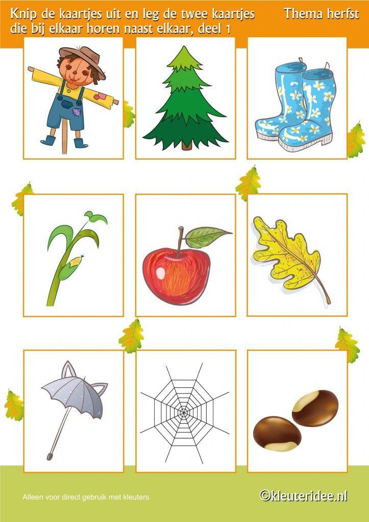 Leg twee kaartjes die bij elkaar horen naast elkaar deel 1 , thema herfst voor kleuters, juf Petra van kleuteridee, Preschool autumn theme, free printable