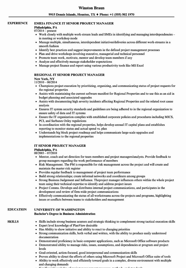 23 It Manager Resume Examples in 2020 Good resume examples