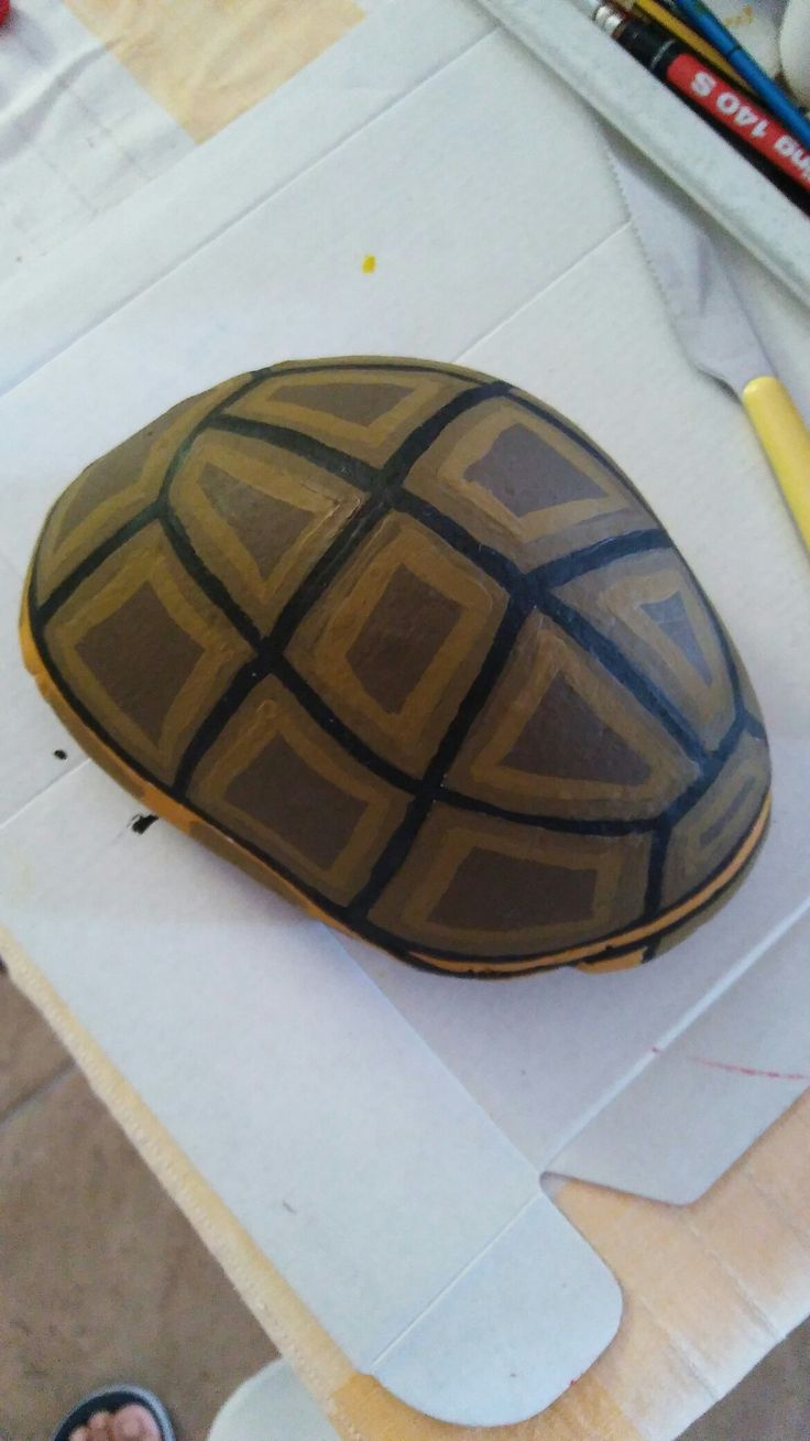 I m very proud of my stone turtle!!