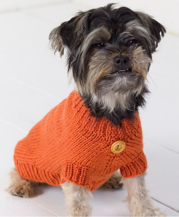 Life is Ruff Knit Dog Sweater -- I'll have to make one of these for the little pug next door! Don't think my cats would like it!