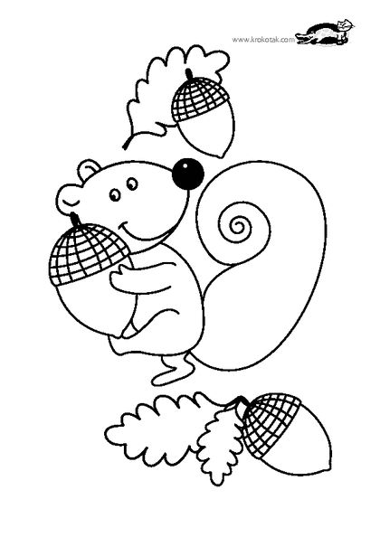 17 best images about ecureuil on pinterest for kids colouring pages and cute squirrel