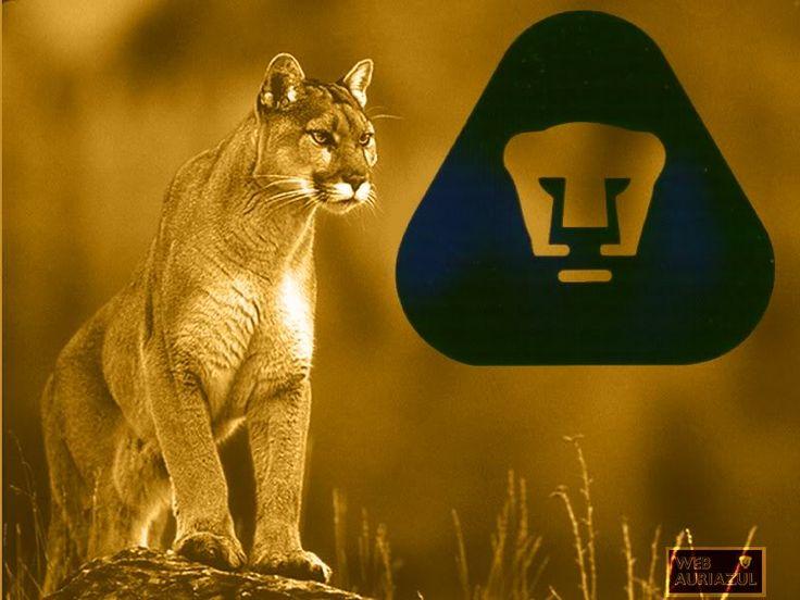 Pumas Unam Logo | pumas unam graphics and comments