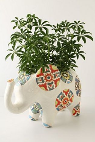 elephant planter (kitchen hutch idea)