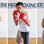Johnny's Punching Combinations List