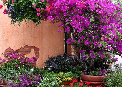 Mediterranean Outdoor Decor   Tuscan Mediterranean Garden Doorway