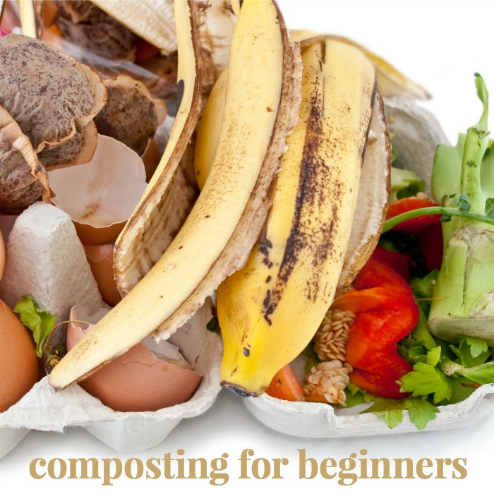 Composting for Beginners - Compost is a natural nutrient rich soil that anyone, even beginners, can make. You can compost tea bags, egg shells, and more...