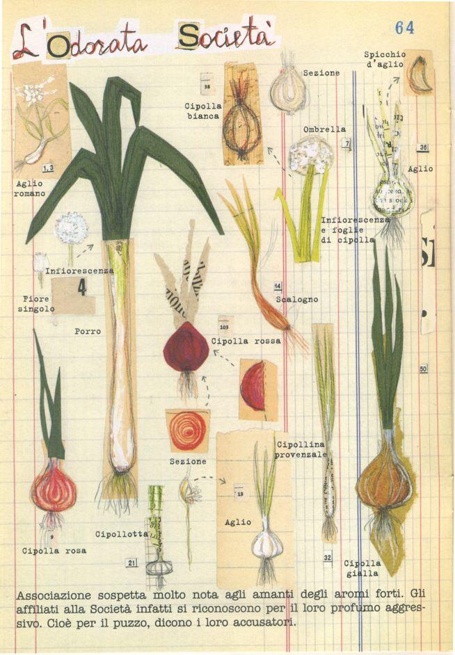 Chiara Carrer, Processo alle verdure, Giunti editore, 2002